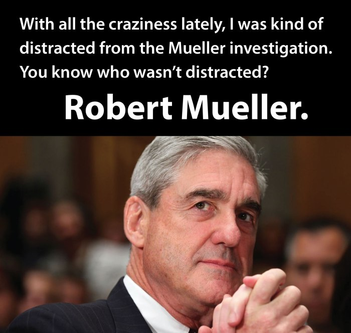 MuellerDistractions