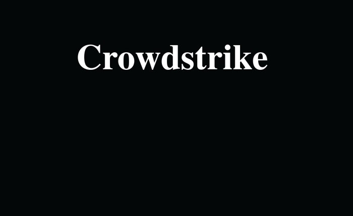 What About Crowdstrike?